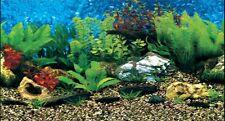 """Vivarium / Aquarium MARINE Background 24"""" Tall Poster Fish Tank Picture viv"""