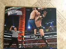 WWE Wrestlemania XXVIII Undertaker vs HHH / Rock Vs John Cena Sided Poster 11x14