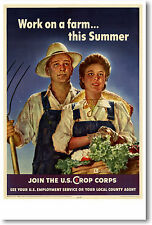 Work on a farm this Summer - Join the U.S. Crop Corps