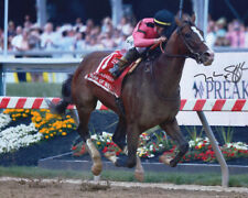 War At Will 2019 Preakness Stakes Photo 8x10 Signed Tyler Gaffalione