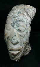 """Fossilized Oyster Shell Carving - Indonesian warrior face 10"""" long"""