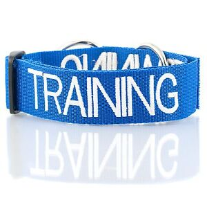 Choke Dog Collar Color Coded Blue TRAINING Safe Walk Total Control Wide Nylon XL