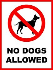 Pack of 2 140 mm x 180 mm No Dogs Allowed sign Waterproof STICKERS