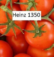 Heinz 1350 Tomate Tomaten Samen neue Ernte 2019  bio Anbau Nr.305