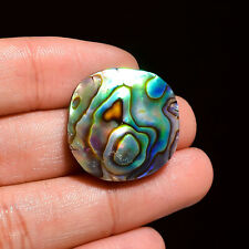 Natural Abalone Shell Round Shape Cabochon Loose Gemstone 33 Ct. 24X24X7 mm