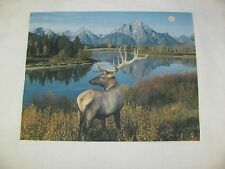 1 ELK MOUNTAIN WATER QUILT SQUARE SEWING BLOCK FABRIC  QUILTING OUTDOOR RUSTIC