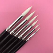 Cake Decorating brushes, cake tools. Cakecraft.