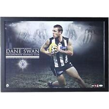 AFL Collingwood Magpies Dane Swan Signed Brownlow Print - Framed