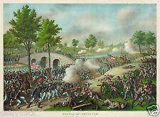 Nos American Civil War Battle de Antietam 12x8 pulgadas impresión