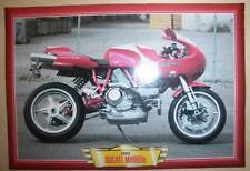 DUCATI MH900 E MH 900  MIKE HAILWOOD MOTORCYCLE BIKE 2000'S PICTURE 2000