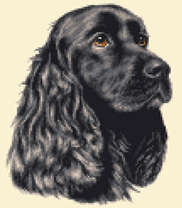 BLACK COCKER SPANIEL dog - FULL counted cross stitch kit *Jann Designs