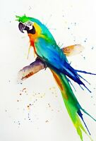 """Watercolor original 8""""x11"""" painting parrot bird by Anne Gorywine"""