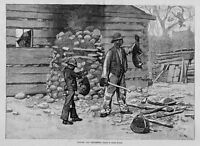 NEGROES CATCH OPOSSUM HUNTING WOODPILE AXE POSSUM FOR SUPPER 1885 HISTORY