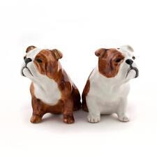 English Bulldog Salt and Pepper Pots English Bulldog Cruet NEW