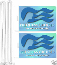 2x Princess Cruise Line Luggage Baggage Suitcase Travel Trip Name ID Label Tags