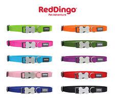 Red Dingo Adjustable Dog Collars