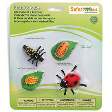 Life Cycle Of A Ladybug Figures Safari Ltd NEW Toys Collectibles Kids Education