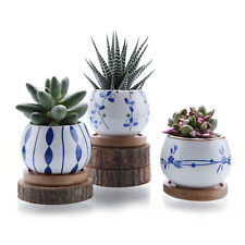 T4U Ceramic Succulent Cactus Plant Pot with Tray Japnese Style Round Pack of 3