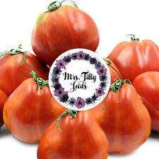 Tomate BLACK TRUFFLE Tomatensamen Saatgut 10 Samen kältetollerante Stabtomate