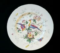 Beautiful Coalport Cairo Peacock Multi Colour Dinner Plate