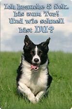 BORDER COLLIE - A4 Metall Warnschild Hundeschild SCHILD Türschild - BOC 07 T14