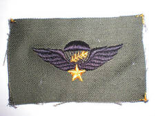 Us Army -South Vietnam Rvn Master Para Wings -Subdued