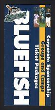 Bridgeport Bluefish--2004 Ticket Brochure/Schedule