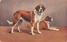 # A110      DOGS    POSTCARD,