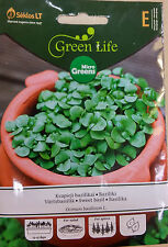 SEEDS FOR GERMINATION - SWEET BASIL,TASTY, FAST GROW,FULL OF VITAMINS, MINERALS