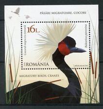 Romania 2018 MNH Cranes Migratory Birds Black Crowned Crane 1v M/S Stamps