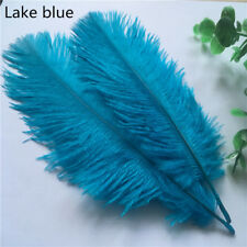 10pcs Lake blue ostrich feathers 6-8 inches / 15-20 cm DIY clothing accessories