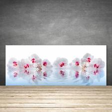 Crédence de cuisine en verre Panneau 125x50 Art Fleurs