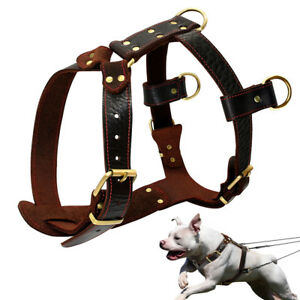 Durable Genuine Leather Dog Harness Heavy Duty Pet Dog Vest Harness for Pitbull