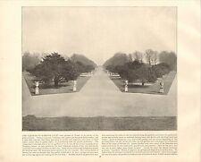 1894 VICTORIAN PRINT ~ GARDENS AT HAMPTON COURT