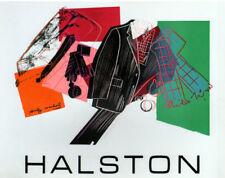 "ANDY WARHOL POSTER ART PRINT ""HALSTON"" AMERICAN WOMENS FASHION DESIGNER 70s"