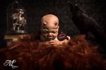 Wicked Little Reborn Dolls