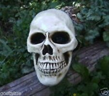 "Lifesize skull mold latex with plastic backup mould 9"" x 5.5"" x 6.5"""