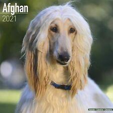 Afghan Calendar 2021 Premium Dog Breed Calendars