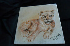 A GREAT ANIMAL PAINTING ON BOARD CUTE LION CUB ,signed A S CORNWALL 1983