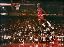 Michael Jordan XXL Poster Slam Dunk Contest mit Gratisposter
