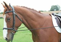 Shires Equestrian Elastic Training Reins Adjustable, Aids Horse or Pony fits all