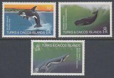 Turks & Caicos 1983 ** ex Mi.634/41 Wale Whale [sq5855]