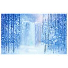 Thin Vinyl Studio Ice Snow Backdrop Photography Photo Background 10x10ft  B X3S0