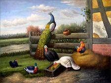 Stretched Quality Hand Painted Oil Painting Peacock and Poultry 30x40in