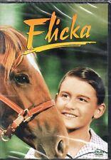 FLICKA - DVD (NUOVO SIGILLATO)