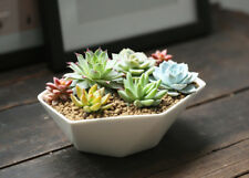Ceramic Planter, Decorative Flower Plant Pot, White, Middle Garden Flower Pots,