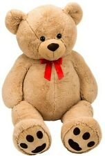 Billy Teddy Bear