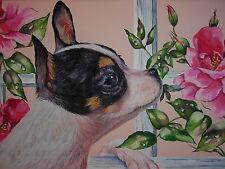 Chihuahua dog animal Rose flower garden print