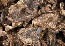Sarcodon aspratus mushroom dried 227 gram, Himalayas Mushroom & Truffles
