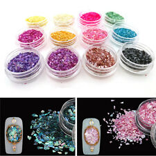 12Colors Glitter Crushed Shell Chips Powder Tips Nail Art Acrylic 3D Decor Set